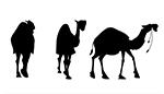 Camel Animation