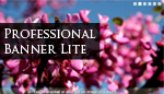 Professional Banner Lite